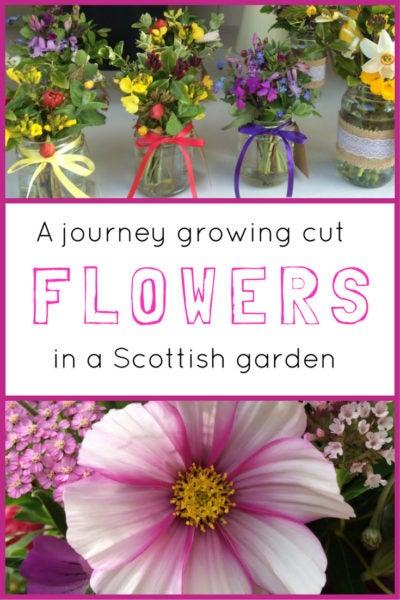Roses In Garden: Top 10 Flowers To Grow For Weddings