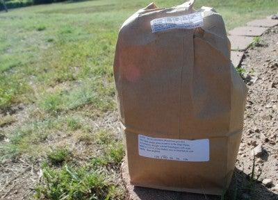 seed-bag