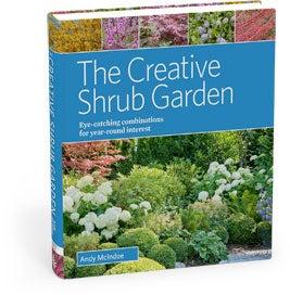 creative shrub garden