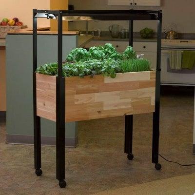 indoor_hebr_garden_grow_kit__74735.1417570682.500.600