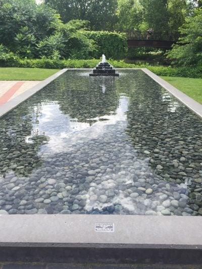 Shallow pond in Thai Garden