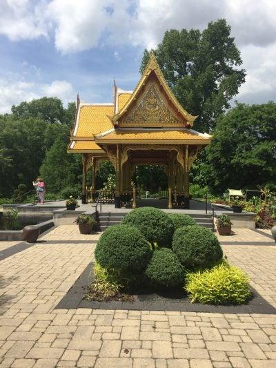 Thai pavilion and bonsai