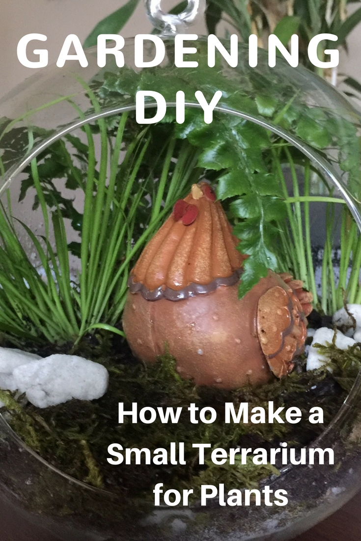 How To Make A Small Terrarium For Plants Gardening Know How S Blog