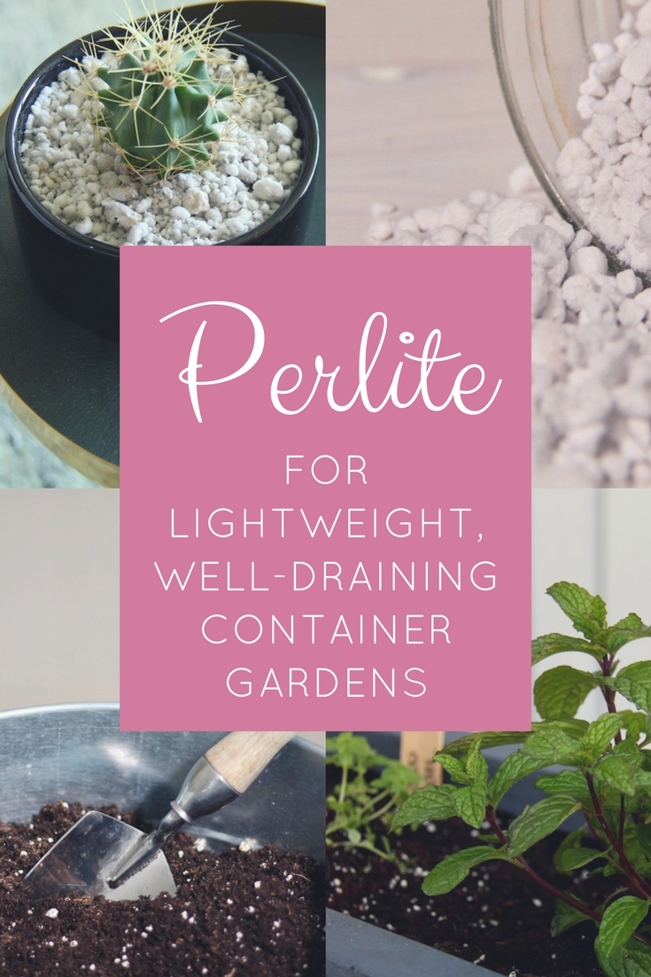 How to Use Perlite for Lightweight, Well-Draining Container Gardens -  Gardening Know How's Blog