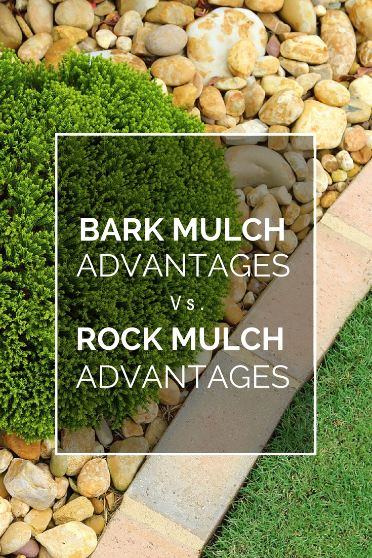 Weighing The Benefits Of Rock Mulch And Bark Mulch In Gardens