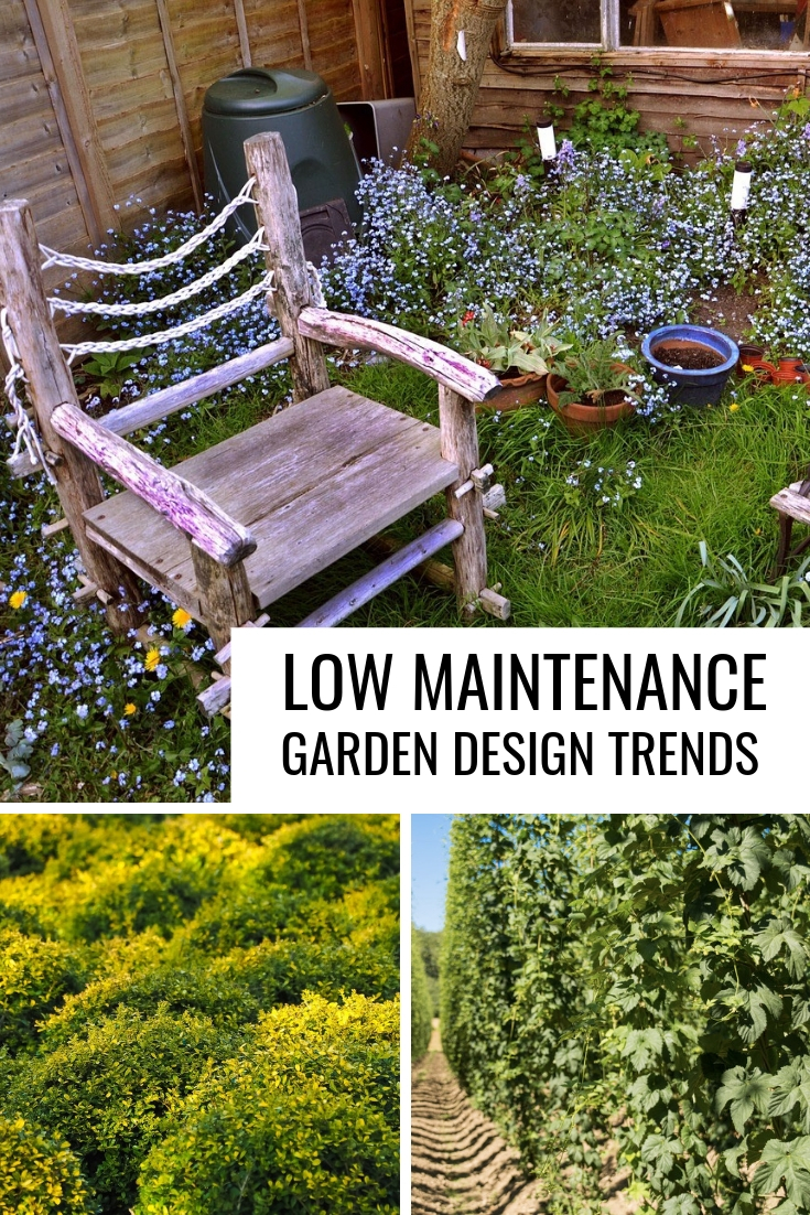 Low Maintenance Garden Design Trends Gardening Know How S Blog