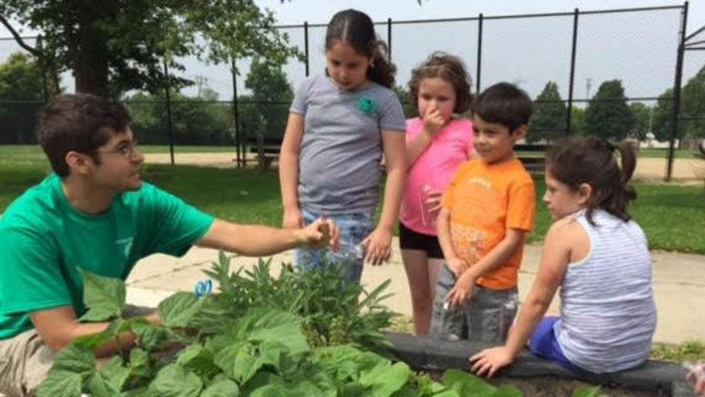 Minuteman Park Harvest Garden