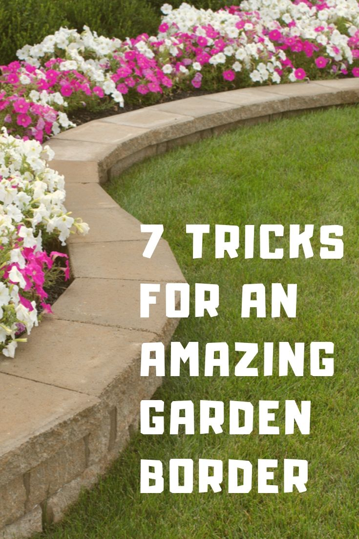 7 Tricks For An Amazing Garden Border Gardening Know How S Blog